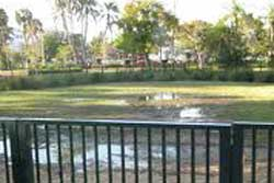 dog park miami beach